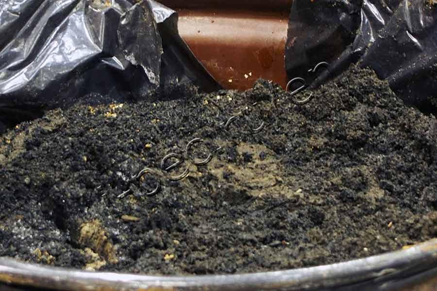 Disposal and Recycling of Sewage Sludge | International